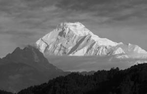 2pt| Snowstorm. L'ultima spedizione di Bruno Brunelt