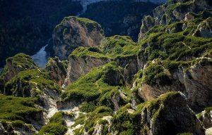 Tra rocce e mughi, nel silenzio dei Monfalconi