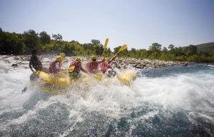 Trentino Wild: outdoor, divertimento e natura